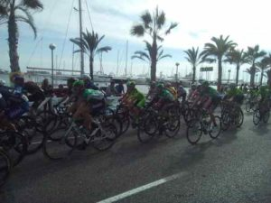 Road Bike Mallorca